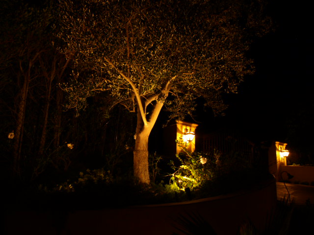 Lighting Dos Vientos Landscape Lights